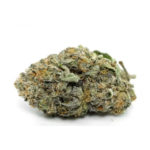 buy-Alien-Rock-Strain-buy-weed-online-green-ganja-house