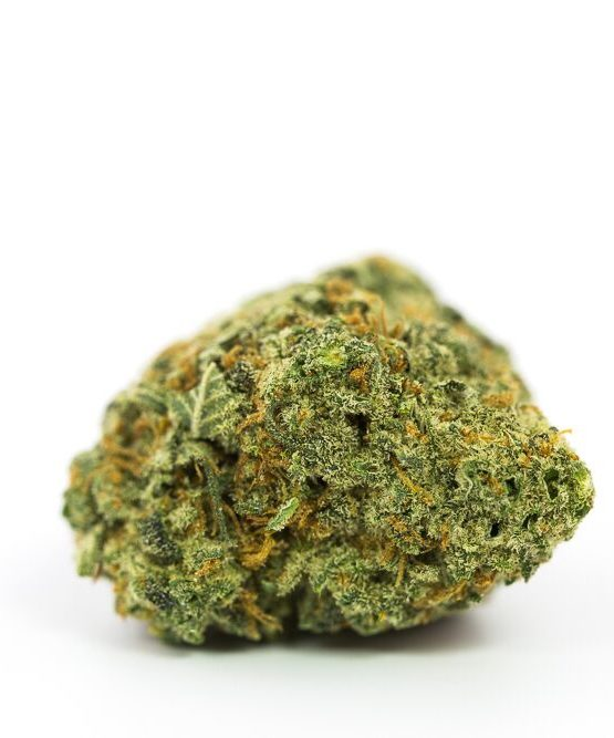 buy-weed-online-green-ganja-house-strain-Bay Eleven