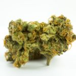 buy-weed-online-green-ganja-house-strain-Sweet Cheese