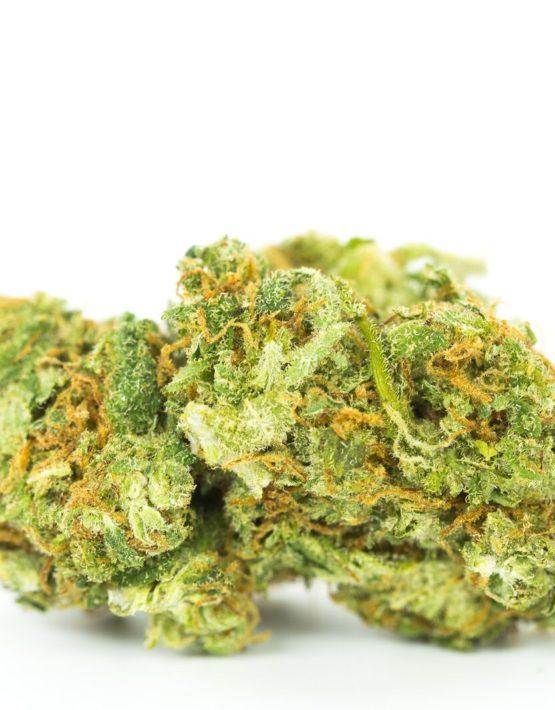 buy-Purple Amnesia-Strain-buy-weed-online-green-ganja-house-strain