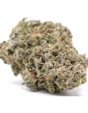 buy-boss-hogg-Strain-buy-weed-online-green-ganja-house