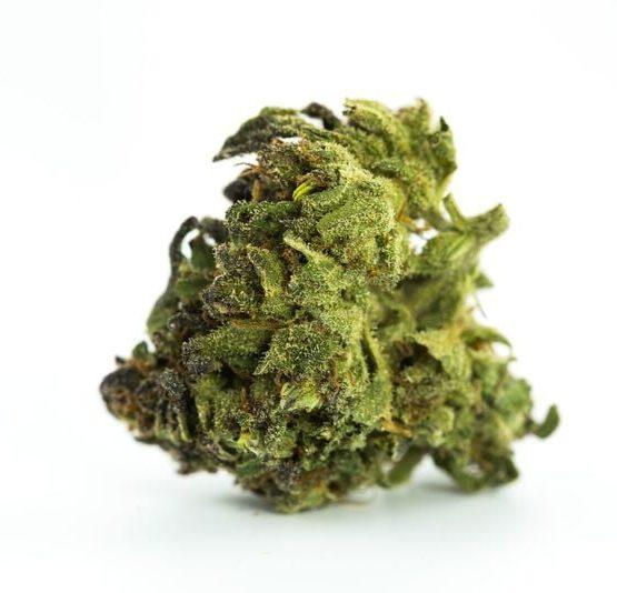buy-weed-online-Animal-Cookies-Marijuana-Strain-green-ganja-house
