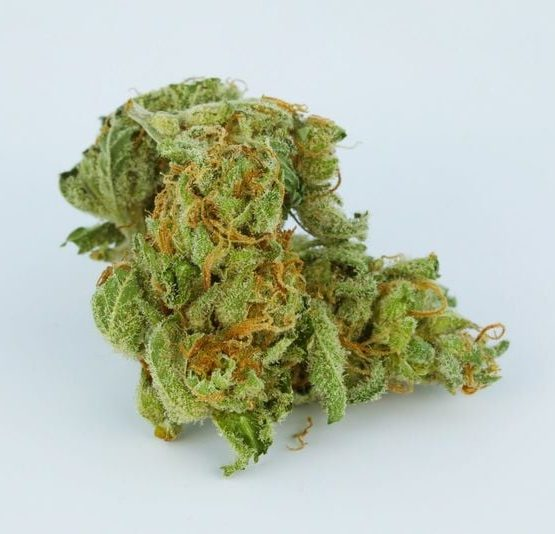 buy-Electric-Lemon-G-Marijuana-Strain-buy-weed-online-green-ganja-house
