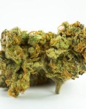 buy-Gorilla-Cookies-Marijuana-Strain-buy-weed-online-green-ganja-house