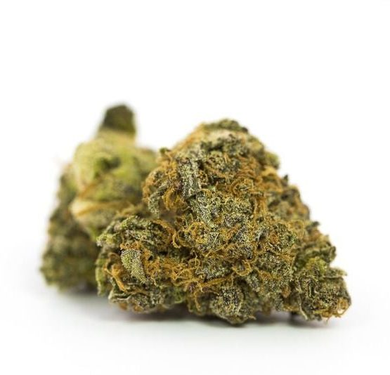 buy-Gorilla-Glue-Marijuana-Strain-buy-weed-online-green-ganja-house