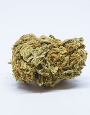 buy-Hindu-Kush-Marijuana-Strain-buy-weed-online-green-ganja-house