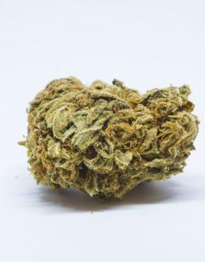buy-Hindu-Kush-Marijuana-Strain-buy-weed-online-green-ganja-house