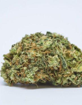 buy-Mendo-Breath-Marijuana-Strain-buy-weed-online-green-ganja-house