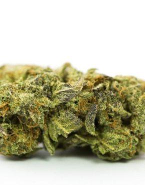 buy-Nebula-Kush-Marijuana-Strain-buy-weed-online-green-ganja-house