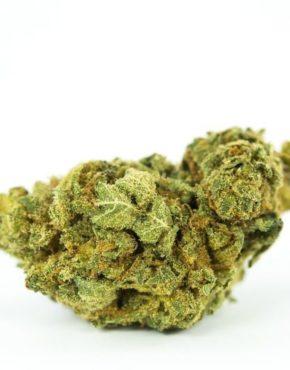 Buy Weed Online | Mail Order Marijuana | Green Ganja House™