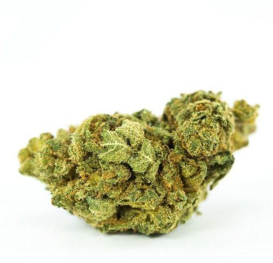 buy-Race-Fuel-Marijuana-Strain-buy-weed-online-green-ganja-house