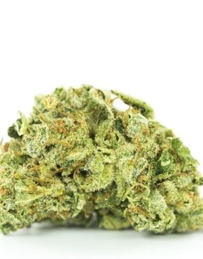 buy-Red-Congolese-Marijuana-Strain-buy-weed-online-green-ganja-house