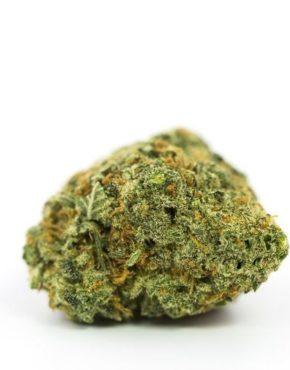 buy-The-Chronic-Marijuana-Strain-buy-weed-online-green-ganja-house