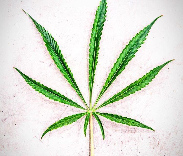 blogpost-buy-weed-online
