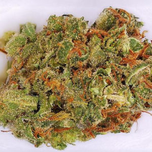 buy-weed-online-Amnesia-Haze-green-ganja-house