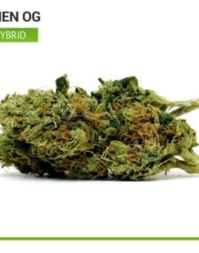 alien-OG-top-shelf-hybrid-strain-cannabis_buy-weed-online_on-green-ganja-house