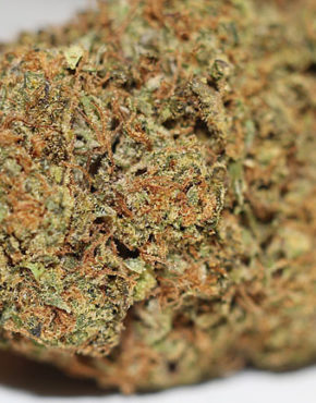 buy-cherry-pie-buy-weed-online-green-ganja-house-worldwide-marijuana-delivery