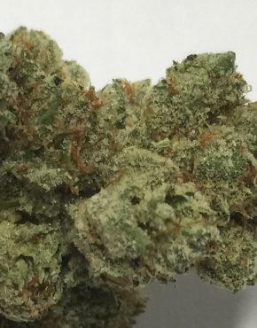 buy-khalifa-kush-buy-weed-online-green-ganja-house