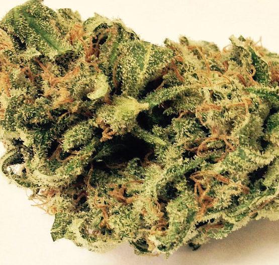 buy-lemon-kush-buy-weed-online-green-ganja-house