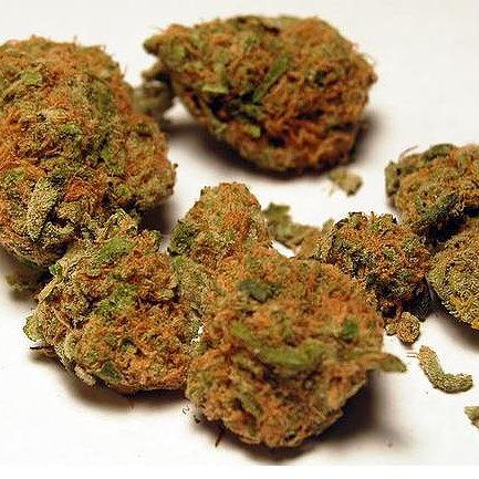 buy-orange-kush-green-ganja-house-buy-weed-online