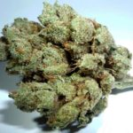 sky-walker-og-green-ganja-house-buy-weed-online