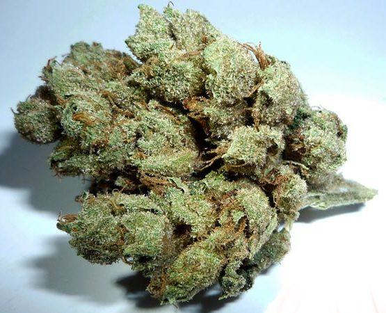 sky-walker-og-green-ganja-house-buy-weed-online